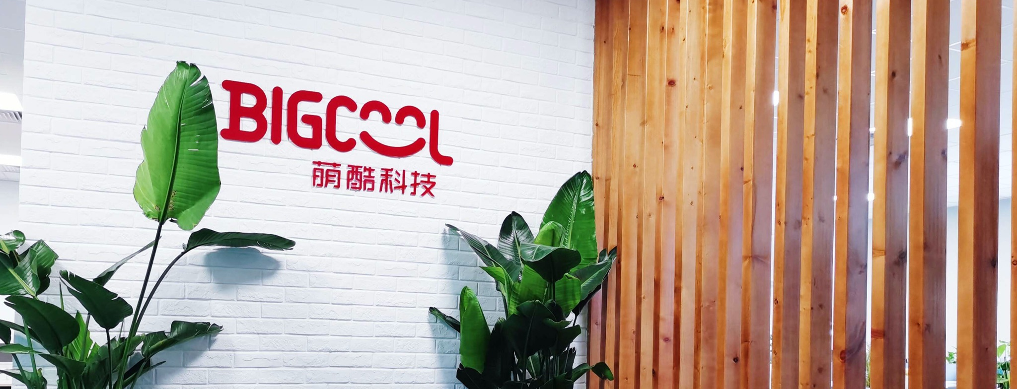 About Bigcool